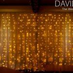 Warm White Semi Naked Backdrop Fairy Lights